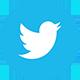 Twitter Logo - Tutbury Castle